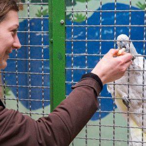 Vogelpark-Fotokurs-13